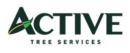 Active Tree Services